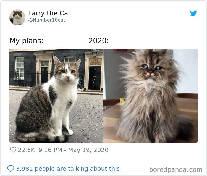 meilleure version vous-même 2021